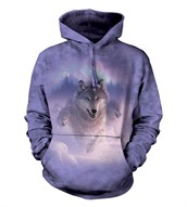 Northern Lights adult hoodie