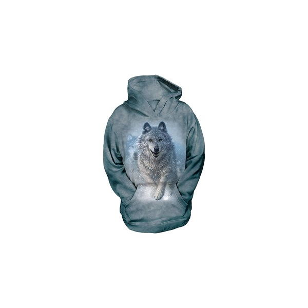 Snow Plow child hoodie